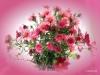Blumen aus eigener Zucht2